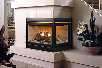 ENERGY EFFICIENT : DIRECT VENT : GAS FIREPLACE INSERT