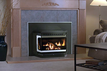 Gas Fireplace Inserts With Blowers Fireplaces